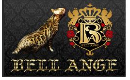 bengal-Side-Blog